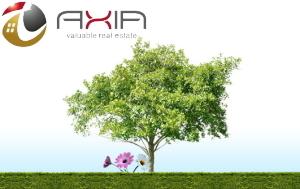 年末年始の営業のお知らせ:株式会社アクシア